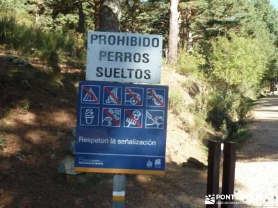 JUEVES Senderista - Cuerda de las Cabrillas y Valle de la Barranca;puente de mayo viajes viajes en a